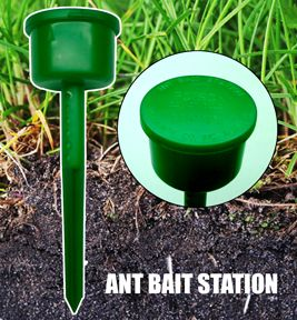 Ant Bait Station (Outdoor)