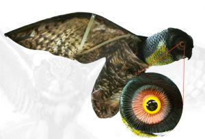 Winged owl decoy